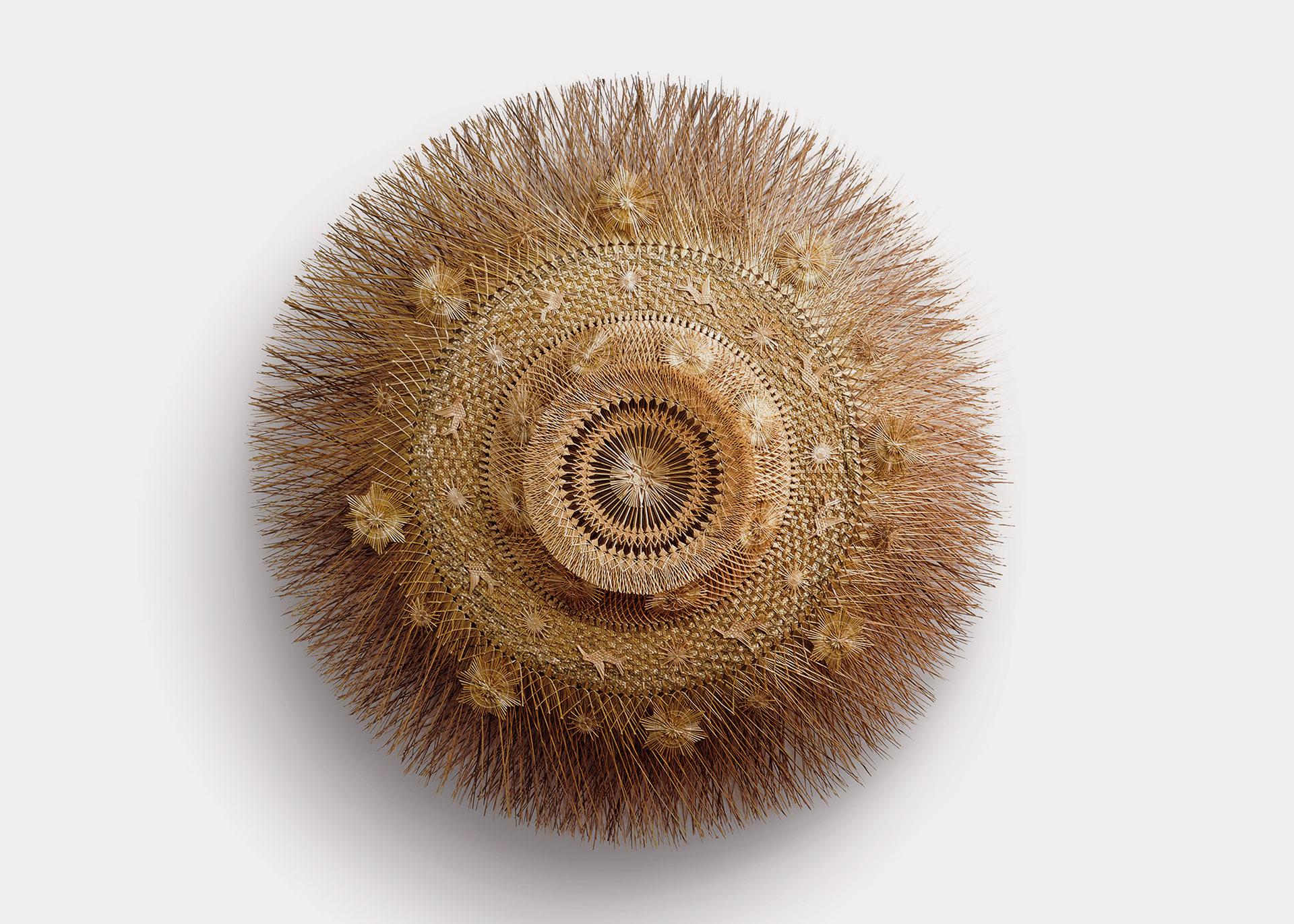 Loewe Craft Prize, Artesanías Panikua, Weizenfaser